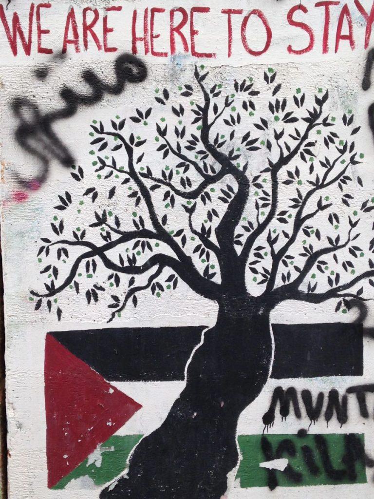 Palestine Wall Murals 2