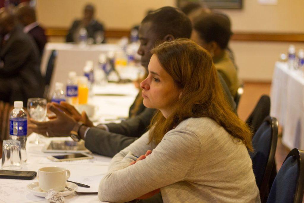 PhD Induction Harare June 2016 Pundutso Workshop Laila Abdul Majeed