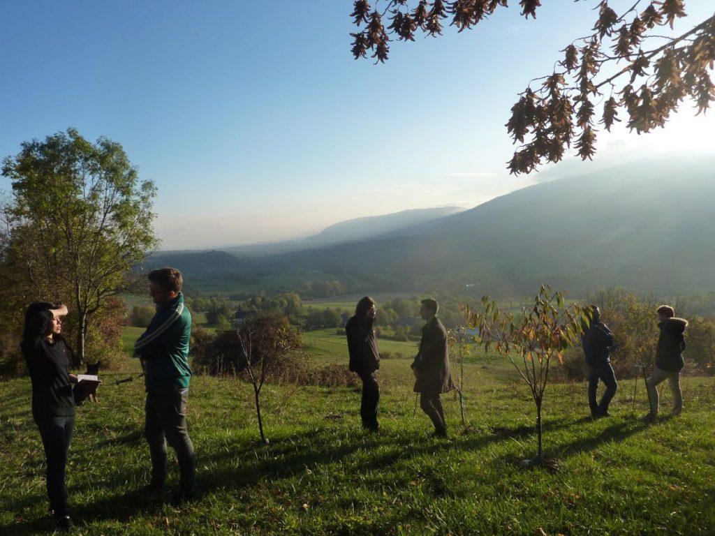 2016-11-02-hotonnesta-course-st-gallen-group-work-nature-3