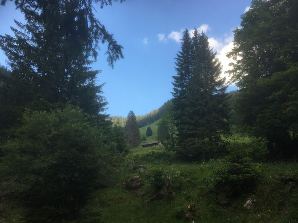 2018 06 18 Switzerland Beatenberg Education Retreat Panorama 4