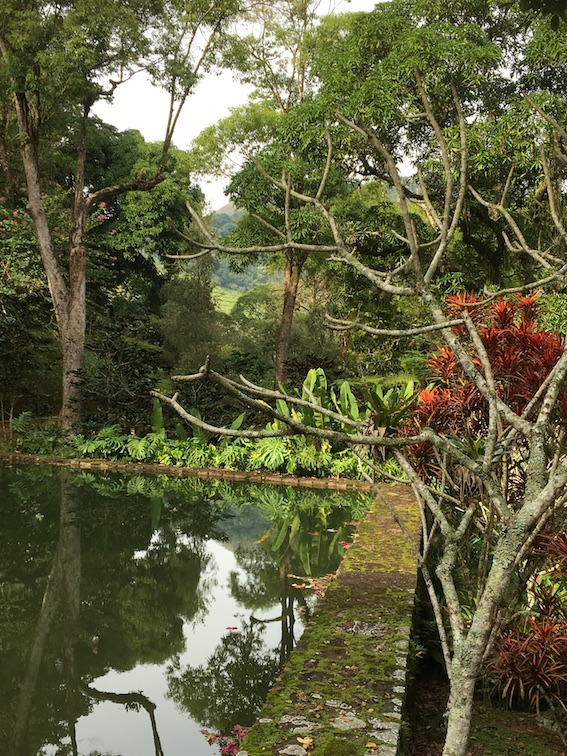 2019 05 19 Brazil Sinal Cachoera Waterpond behind Roundhouse