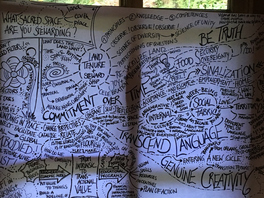 2019 05 22 Brazil Sinal Regeneration Campus Workshop Graphic Recording