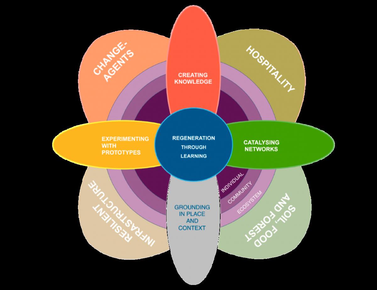 Sinal Integral Model Mandala 2019