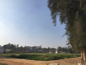 Location for the SESC Learning Garden at SEKEM